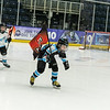 """Action from Paisley Pirates v Murrayfield Racers at Braehead Arena on 12 January , Picture: Al Goold ( <a href=""""http://www.algooldphoto.com"""">http://www.algooldphoto.com</a>)"""