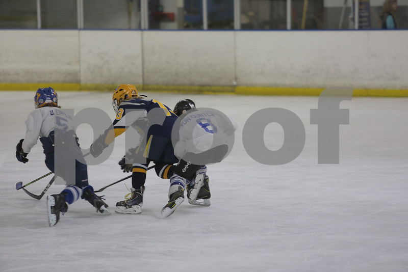 Sun-South-130-SquirtB-Championship-Flyers-Penguins-5524