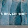 Terminus, Marjerie Glacier