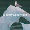 Gull on Iceberg, Muir Inlet, Glacier Bay