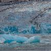 Dawes Glacier and Iceberg