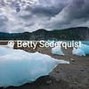 Beached Icebergs, Muir Inlet, Glacier Bay