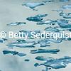 Iceberg Abstract, Glacier Bay