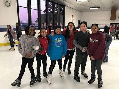 Family Ice Skating Party 2018