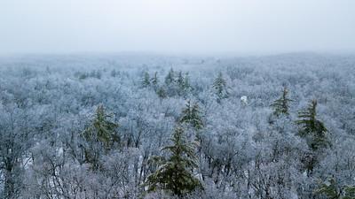 Ice Storm Aerial-0326
