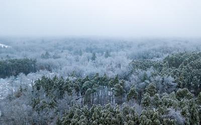Ice Storm Aerial-0321