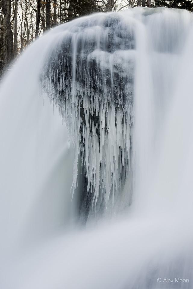 Winter's Veil