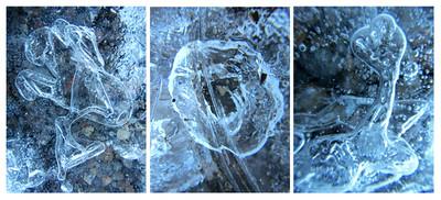 Frozen Collage #7