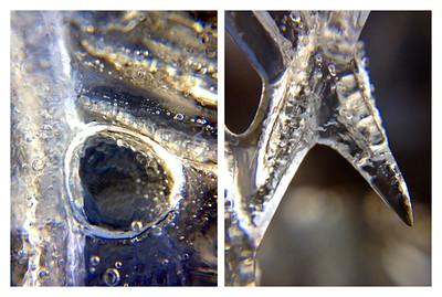Frozen Collage #6