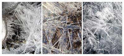Frozen Collage #5