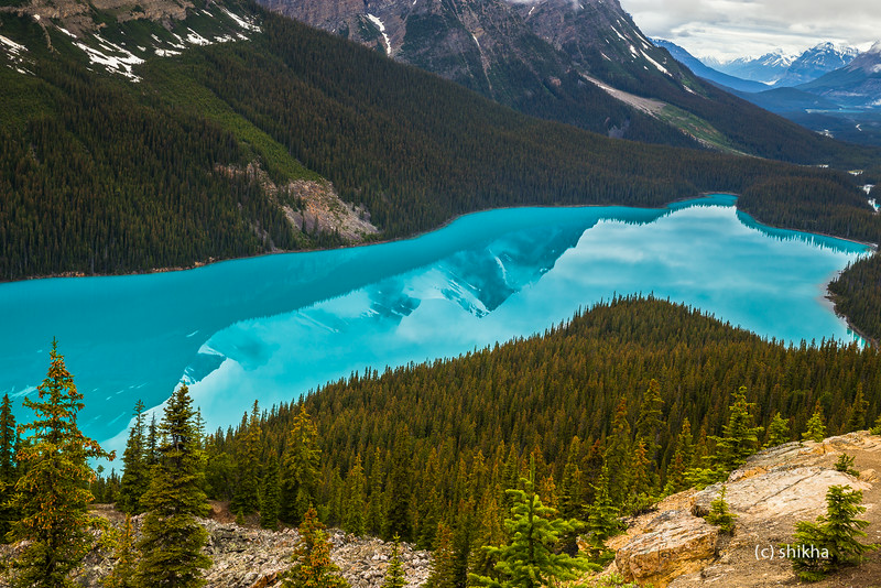 Peaks reflecting in Peyto lake