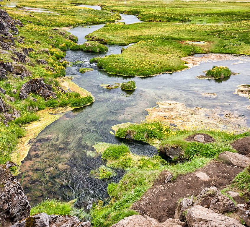 Wildflowers, geothermal streams and lush greenery