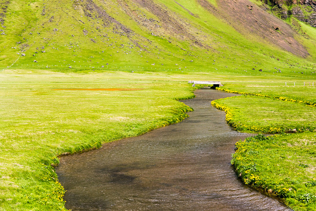 Rivers and wildflowers