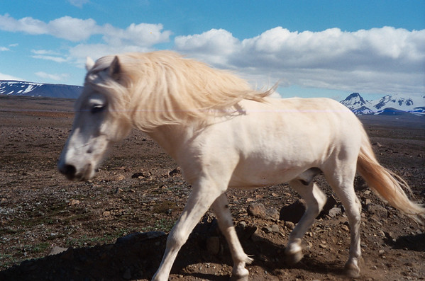 Iceland  1998
