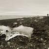 """""""Berglette"""" washed up on shore at Jokulsarion Glacier beach."""