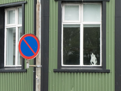 No Parking enforced by feline surveillance. Reykjavik