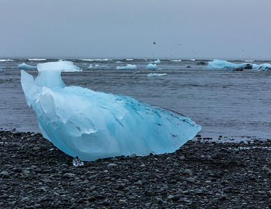 Southeastern Iceland's Diamond Beach.  Glacial ice flowed out of Jökulsárlón, a glacial river lagoon, and out into the Icelandic Sea where waves deposited the ice onto shore.    Jökulsárlón is adjacent to Vatnajökull, Europe's largest glacier (volume). Jökulsárlón is also now Iceland's deepest lake (75+ feet) given the receding glacier.