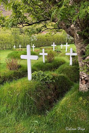 Hofskirkja cemetery