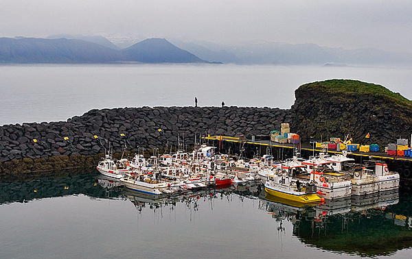 Harbor in Arnarstapi
