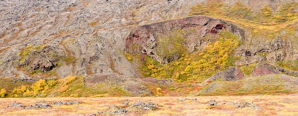 Fall colors on lava rock outside Reykjahlið