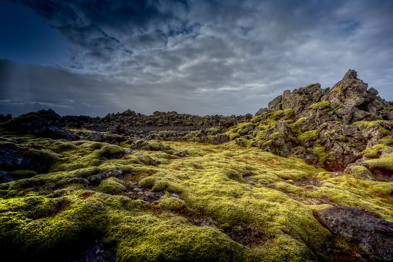 Moss Covered Rocks, Reyljanes