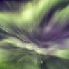 Northern lights corona