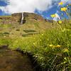 Icelandic summer day