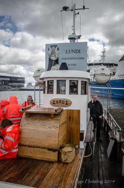 Lundi - Puffin and Harbor Tour - Reykjavik