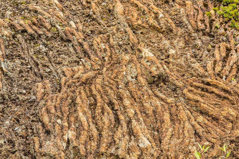 Ropy Lava (Pahoehoe)
