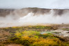 The hot springs area of Geysir, Iceland.