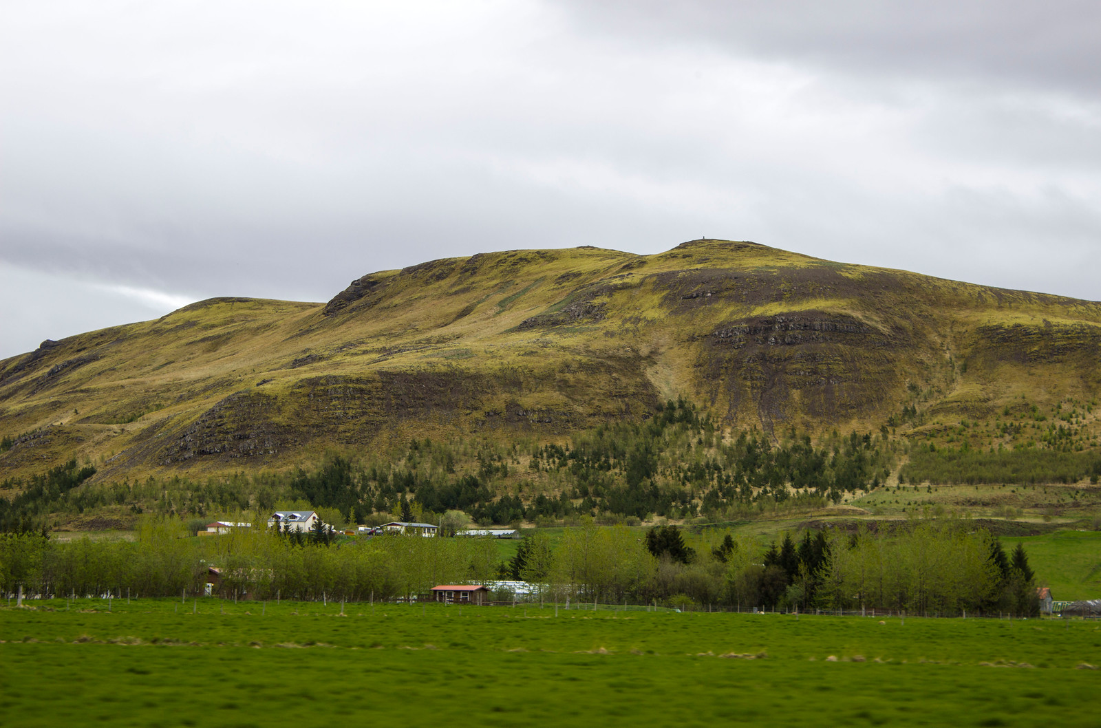 The scenery of rural Iceland - Mountains, lush greenery, farm houses