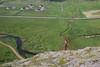 Geyser Area(1)