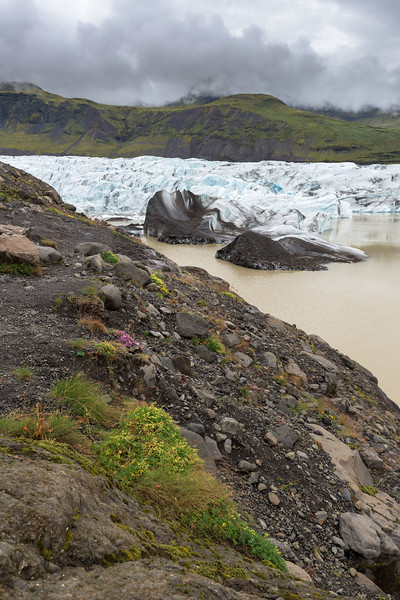 Life Near Glacier