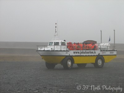 We took a ride on the lagoon on one of these amphibious vehicles... very cool.