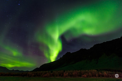 Northern lights skyline