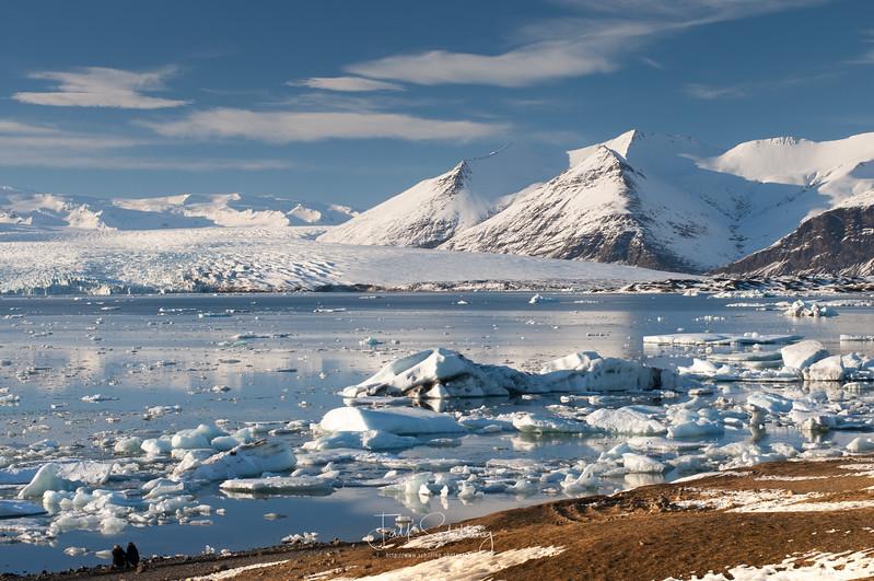Jökulsárlón Ice Sculptures