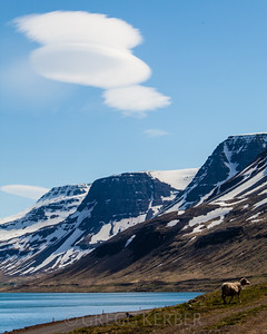 Near Suðureyri