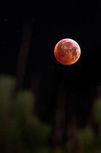 Lunar eclipse over Heiðmörk
