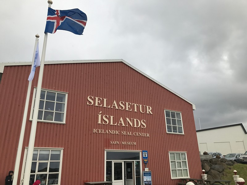 icelandic seal center