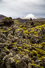 Moss covered lava fields near Grundarfjordur, Iceland.