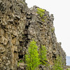Thingvellir National Park - Tectonic Plates