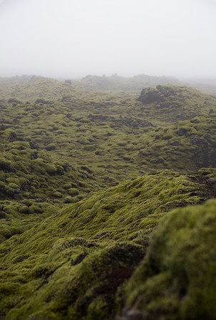 Moss-covered Lava Field, Southern Iceland