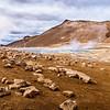 Taking a stroll on Mars - Námaskarð, Iceland