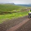 Fellow wanderers - East Iceland