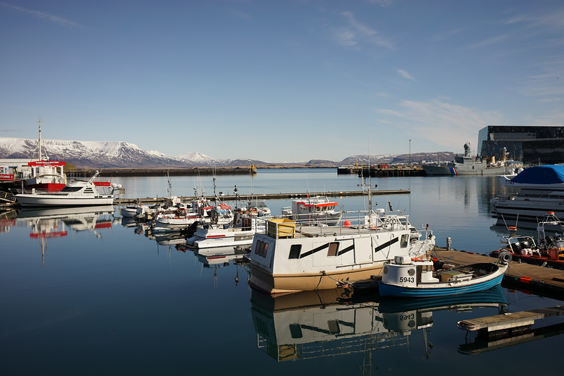 It was still too early for check-in so we went down to Reykjavik harbor for lunch. Just spectacular