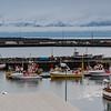 Iceland07-6220