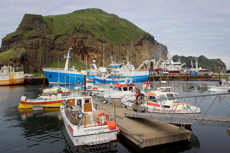 Fishing boats galore.