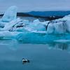 Iceland07-6642