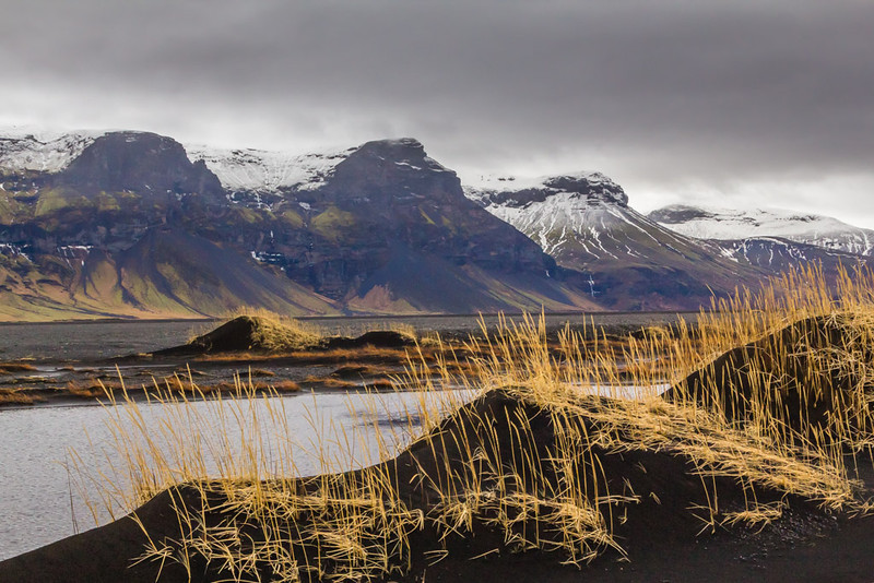 Golden Dunes -  Between Hofn And Vik, Iceland - Cosmas Liu, MD - March 2014