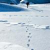 Guide Hiking Frozen Glacial Lagoon